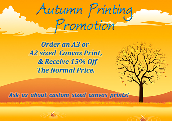 canvas prints specials, canvas prints discount